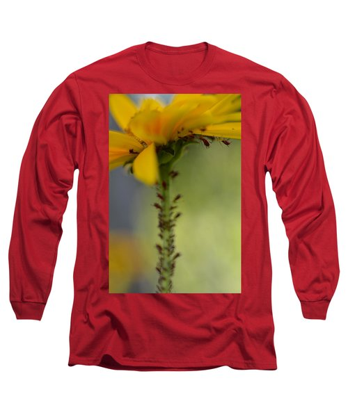 Heliopsis Infested Long Sleeve T-Shirt by Janet Rockburn