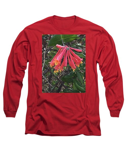 Honeysuckle Long Sleeve T-Shirt by Kay Gilley