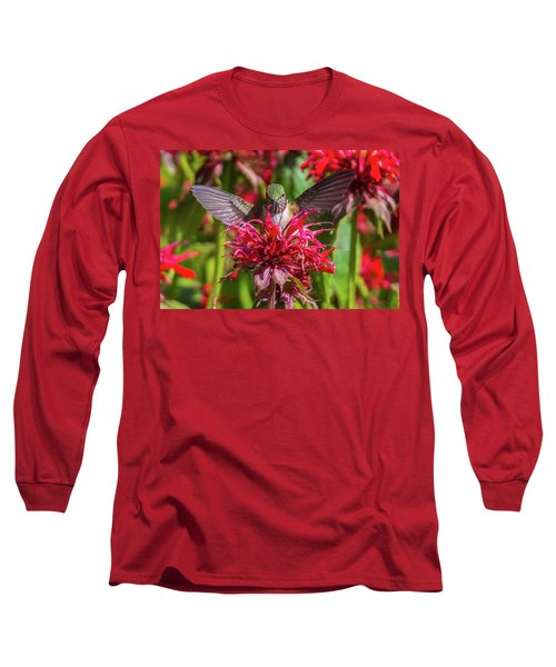 Hummingbird At Eagles Nest Long Sleeve T-Shirt