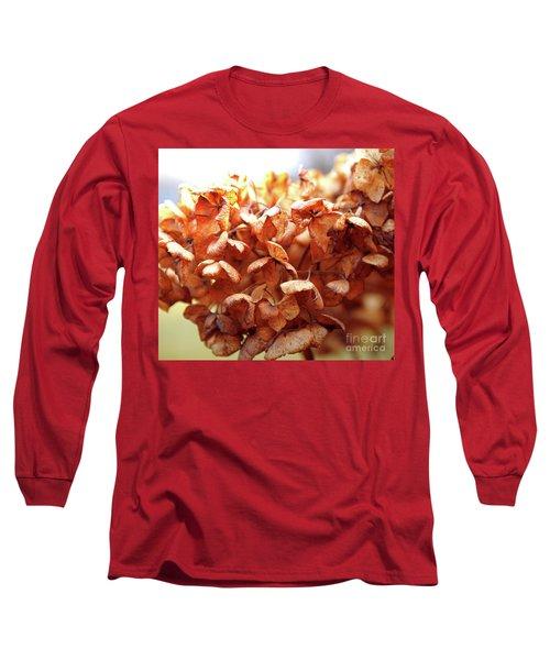 Hydrangea In Sunlight Long Sleeve T-Shirt