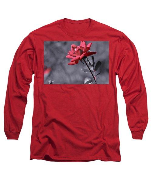 In Full Bloom 2 Long Sleeve T-Shirt by Warren Thompson