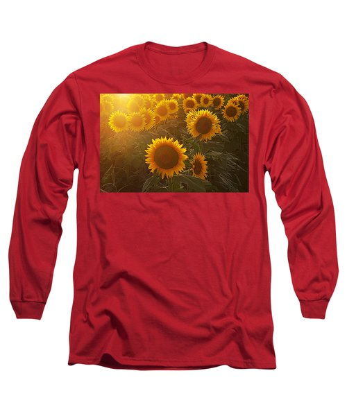 Late Afternoon Golden Glow Long Sleeve T-Shirt by Karen McKenzie McAdoo