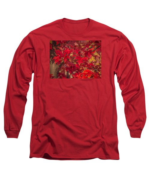 Leaves Of Red Long Sleeve T-Shirt by Cathy Donohoue