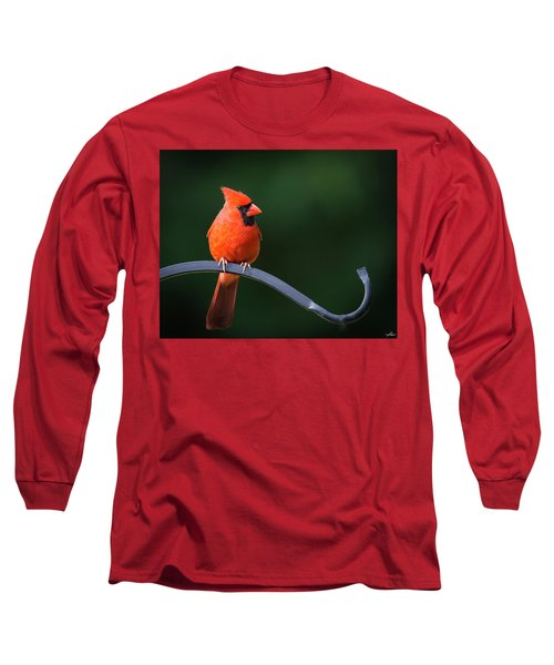 Male Cardinal At The Feeder Long Sleeve T-Shirt
