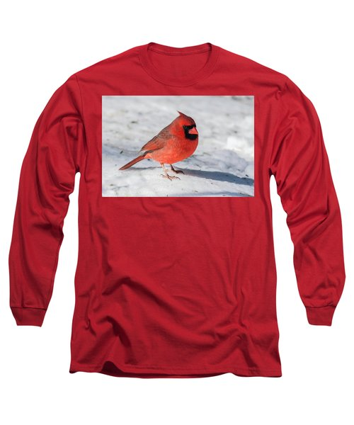Male Cardinal In Winter Long Sleeve T-Shirt by Kenneth Cole