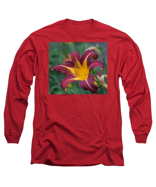 Maroon And Gold Long Sleeve T-Shirt by Arlene Carmel