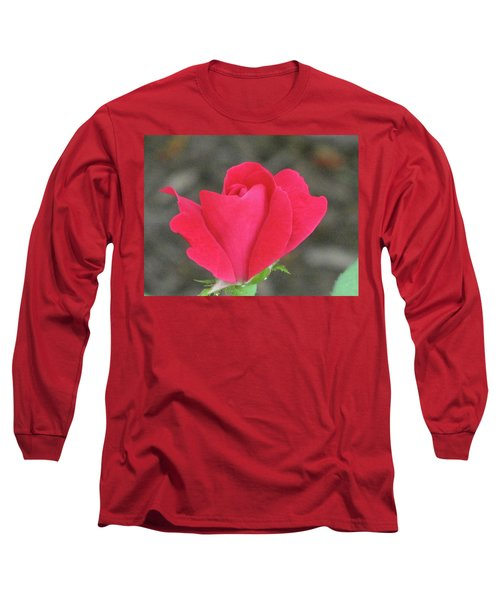 Misty Red Rose Long Sleeve T-Shirt by Michele Wilson