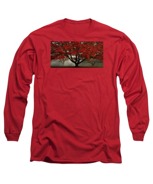 Long Sleeve T-Shirt featuring the photograph Morning Rays In The Forest by Ken Smith