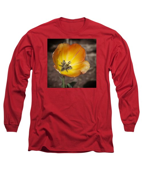 Multihued Long Sleeve T-Shirt by Morris  McClung
