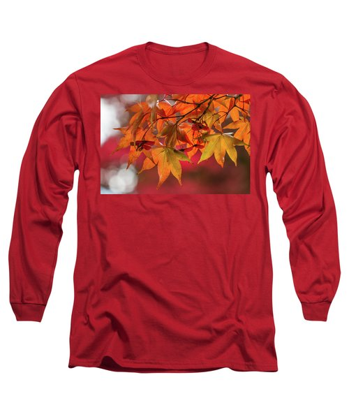 Long Sleeve T-Shirt featuring the photograph Orange Maple Leaves by Clare Bambers
