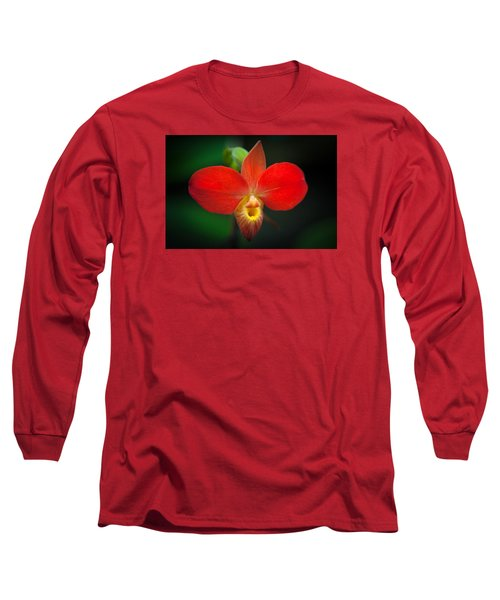 Orchard  Long Sleeve T-Shirt by Catherine Lau
