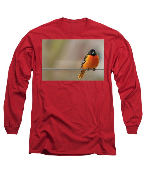 Oriole On The Line Long Sleeve T-Shirt
