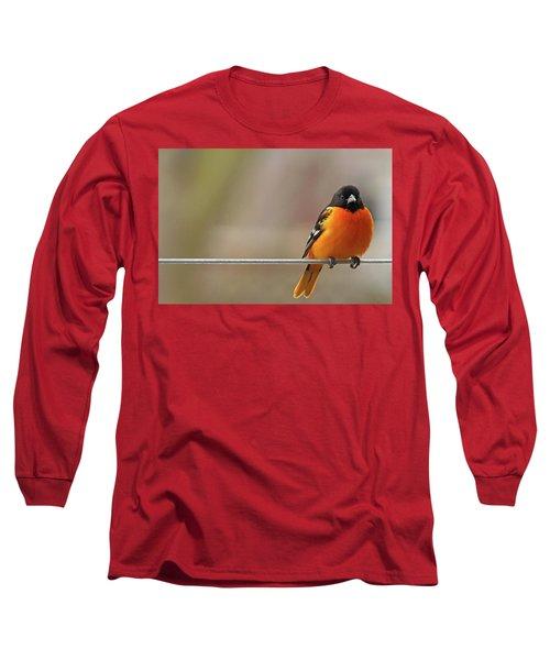Oriole On The Line Long Sleeve T-Shirt