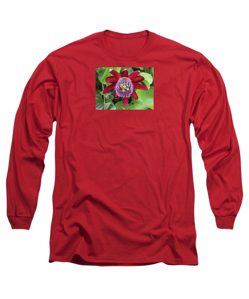 Passiflora Ruby Glow. Passion Flower Long Sleeve T-Shirt