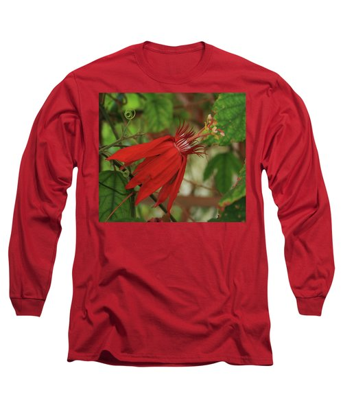 Passion Long Sleeve T-Shirt by Marna Edwards Flavell
