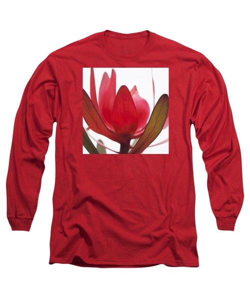 Long Sleeve T-Shirt featuring the digital art Petals by Margaret Hormann Bfa
