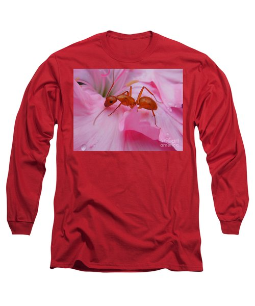 Pharaoh Ant Long Sleeve T-Shirt