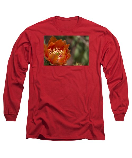 Long Sleeve T-Shirt featuring the photograph Prickly Pear Bloom by Laura Pratt