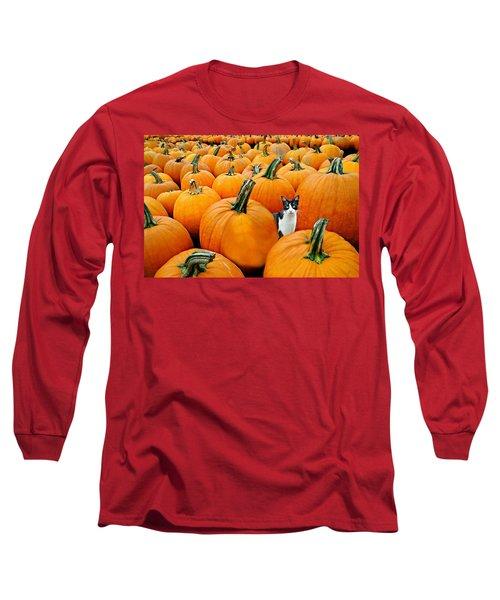 Pumpkin Patch Cat Long Sleeve T-Shirt
