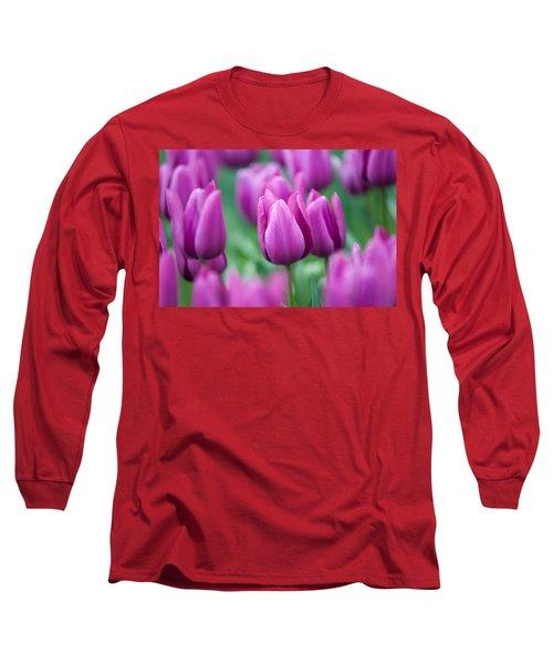 Purple Tulips Of Keukenhof Long Sleeve T-Shirt