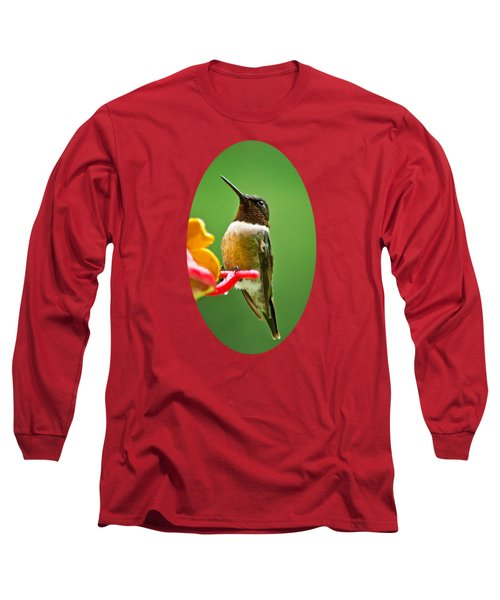 Rainy Day Hummingbird Long Sleeve T-Shirt by Christina Rollo