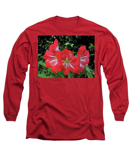Red Amaryllis Trio Long Sleeve T-Shirt