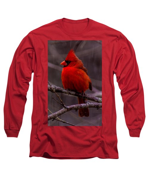 Red Bird Long Sleeve T-Shirt