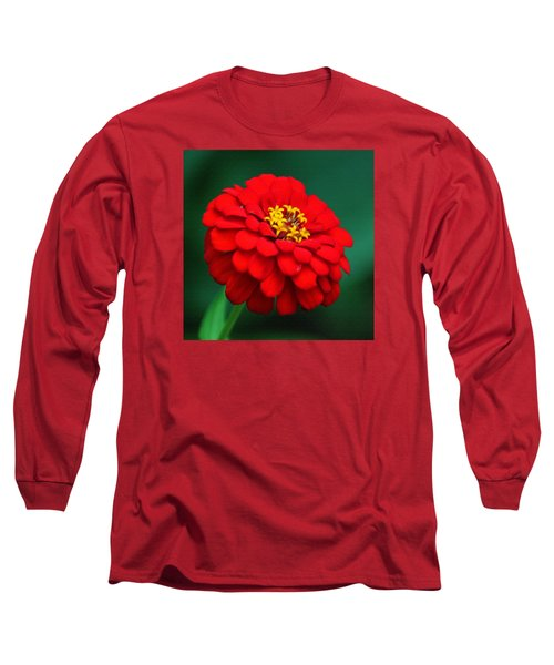 Red Dahlia In Pastel Long Sleeve T-Shirt