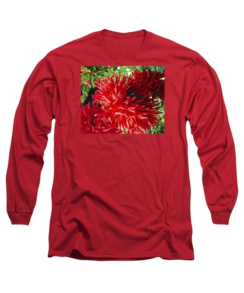 Red Dahlia Pizazz  Long Sleeve T-Shirt