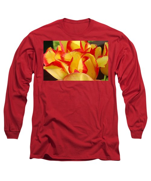 Red-edged Tulips Long Sleeve T-Shirt by Karen Molenaar Terrell