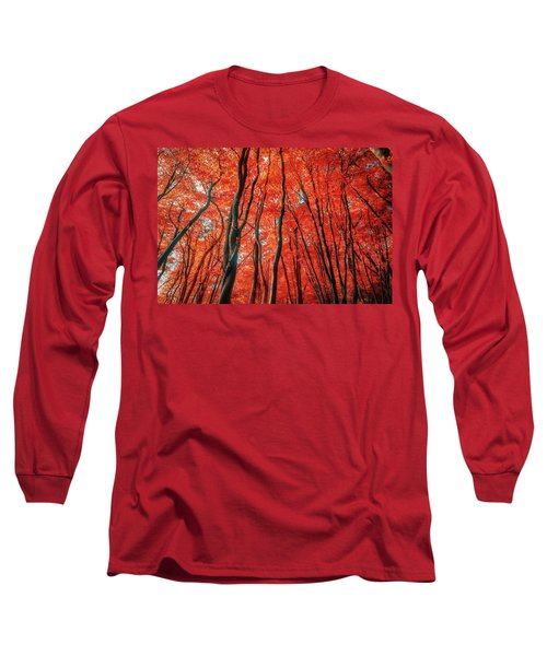 Red Forest Of Sunlight Long Sleeve T-Shirt