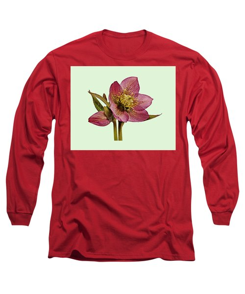 Red Hellebore Green Background Long Sleeve T-Shirt by Paul Gulliver