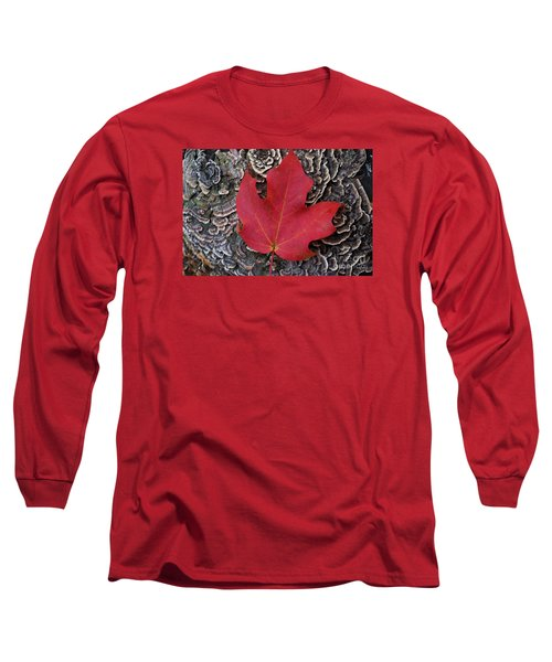 Red Leaf  Long Sleeve T-Shirt by John S