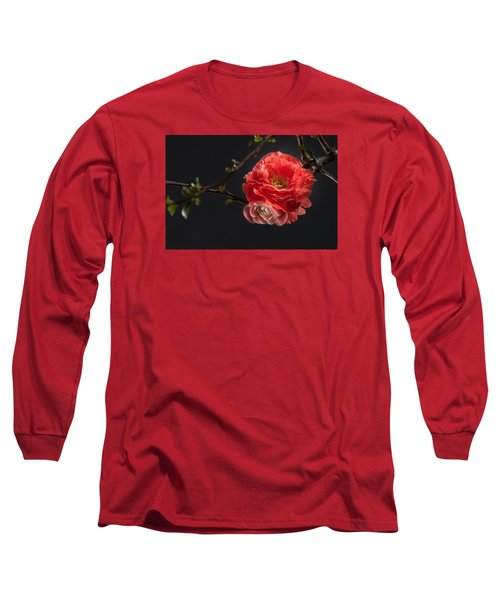 Red Plum In Early Spring Long Sleeve T-Shirt by Catherine Lau