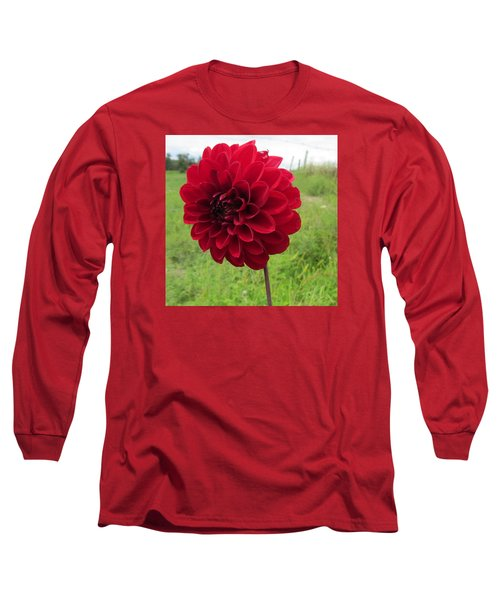 Red, Red, Red Long Sleeve T-Shirt by Jeanette Oberholtzer