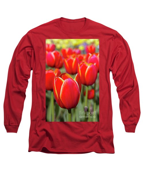 Red And Yellow Tulips I Long Sleeve T-Shirt