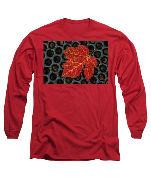 Resting From The Fall Long Sleeve T-Shirt