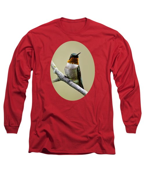 Long Sleeve T-Shirt featuring the photograph Hummingbird Portrait by Christina Rollo