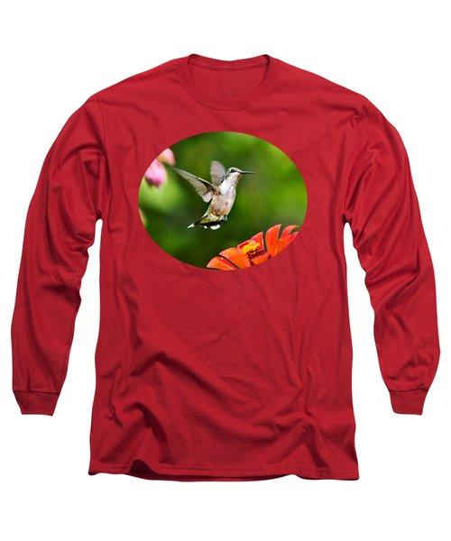 Shimmering Breeze Hummingbird Long Sleeve T-Shirt by Christina Rollo