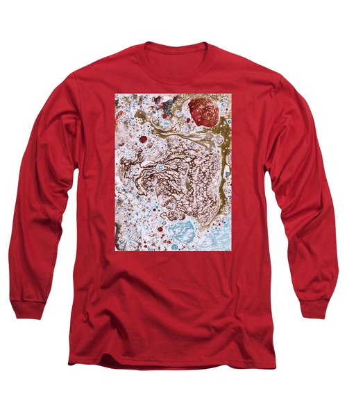 Snapping Turtle In The Sun Long Sleeve T-Shirt by Phil Strang