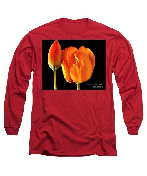 Spring Tulips V Long Sleeve T-Shirt