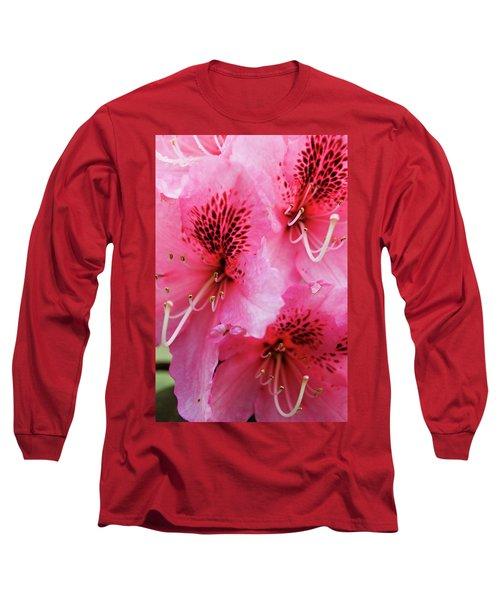 Springtime Azalea Long Sleeve T-Shirt