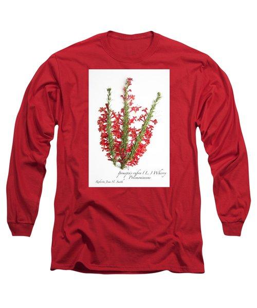 Standing-cypress Long Sleeve T-Shirt