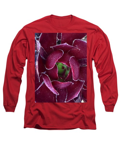 Succulent Mystery Long Sleeve T-Shirt by Russell Keating