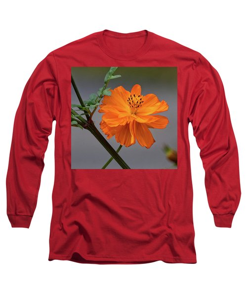 Sulfur Cosmos Long Sleeve T-Shirt