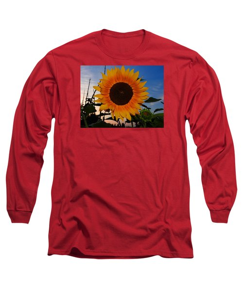 Sunflower In The Evening Long Sleeve T-Shirt by Ernst Dittmar