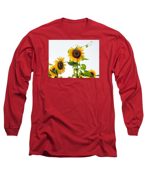 Sunflower With Vine Long Sleeve T-Shirt