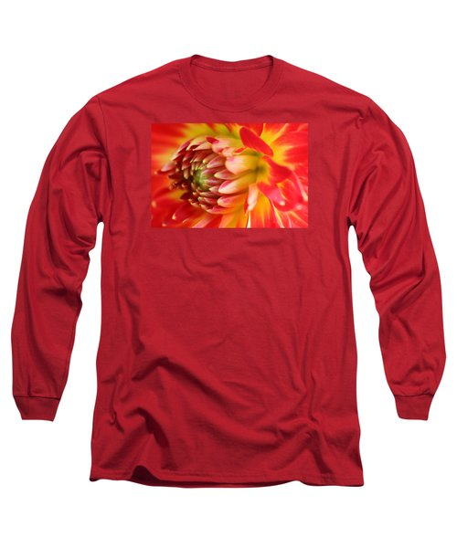 Sweet Spring Long Sleeve T-Shirt by Robert Och