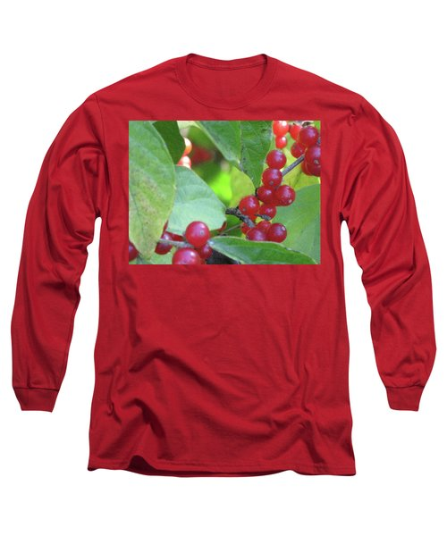 Textured Berries Long Sleeve T-Shirt by Michele Wilson