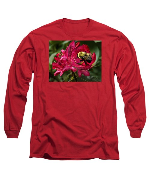 The Bumble Bee Long Sleeve T-Shirt by Mark Allen